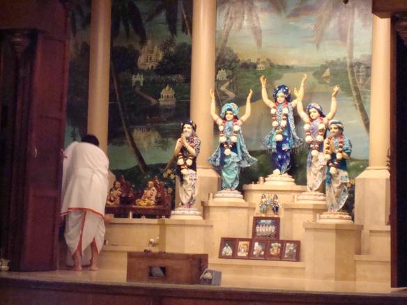 Krishna Buddha cat 017