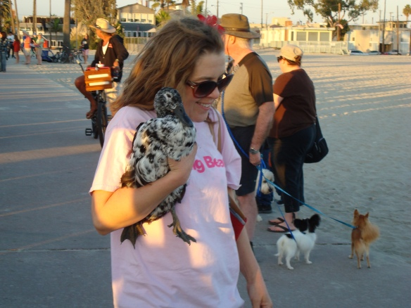 Blessing of the animals 2014 027
