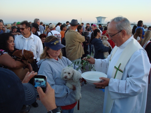 Blessing of the animals 2014 045