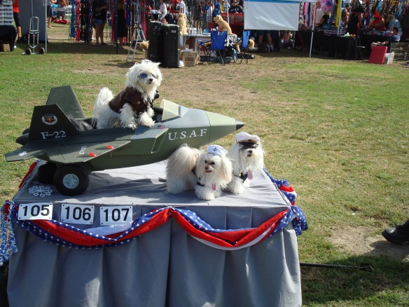 Howlloween Pet Parade 2014 010