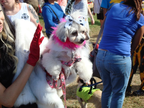 Howlloween Pet Parade 2014 017