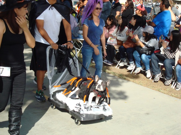 Howlloween Pet Parade 2014 041