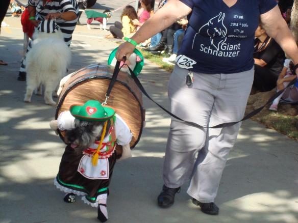 Howlloween Pet Parade 2014 043