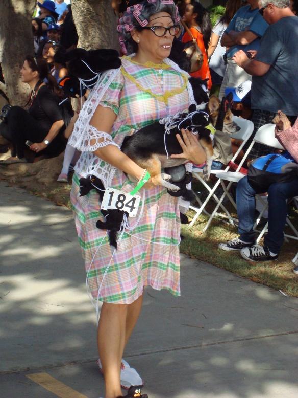 Howlloween Pet Parade 2014 046