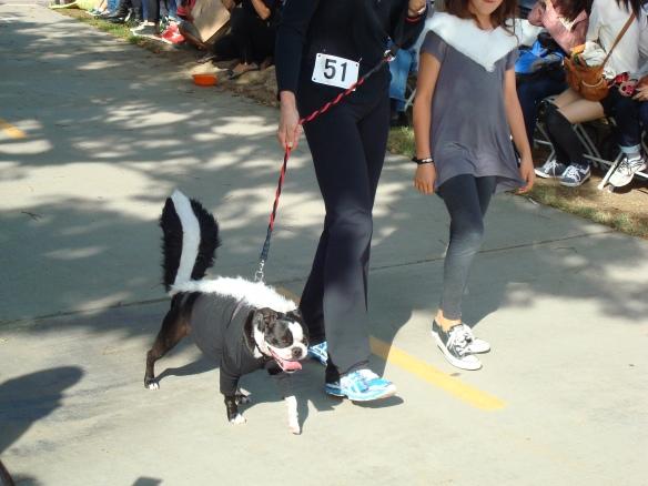 Howlloween Pet Parade 2014 051