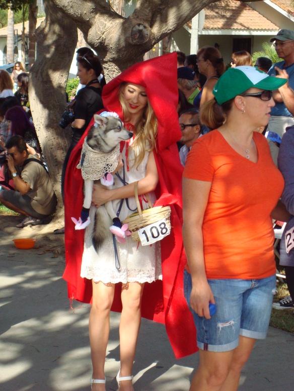 Howlloween Pet Parade 2014 055