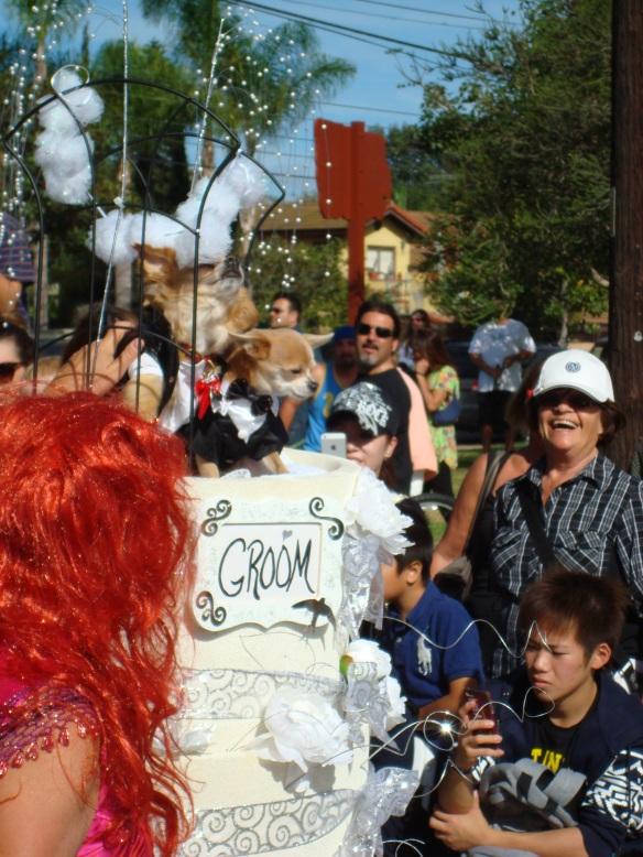 Howlloween Pet Parade 2014 057