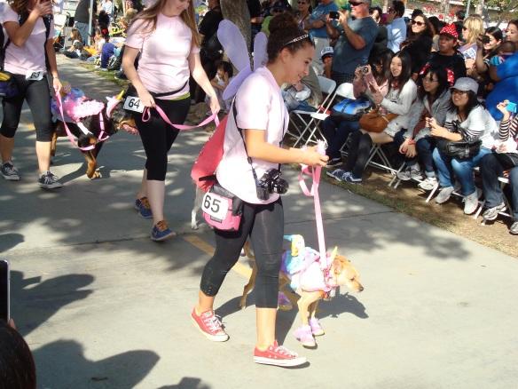 Howlloween Pet Parade 2014 063