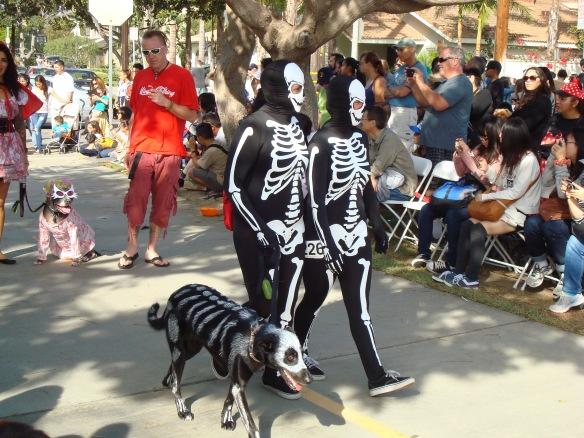 Howlloween Pet Parade 2014 065
