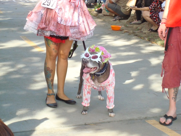 Howlloween Pet Parade 2014 066