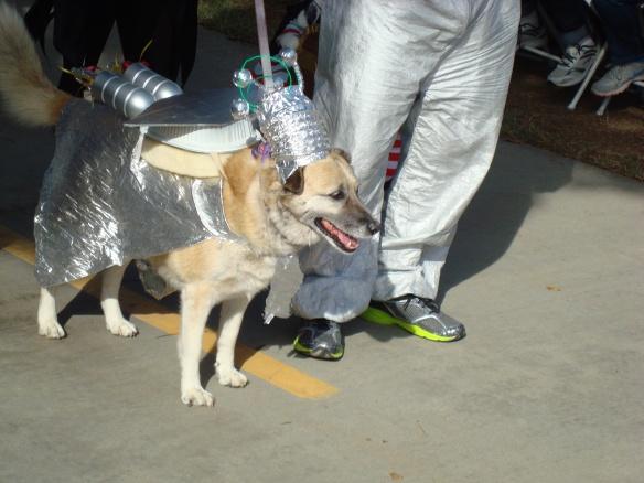 Howlloween Pet Parade 2014 074
