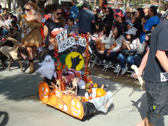 Howlloween Pet Parade 2014 077