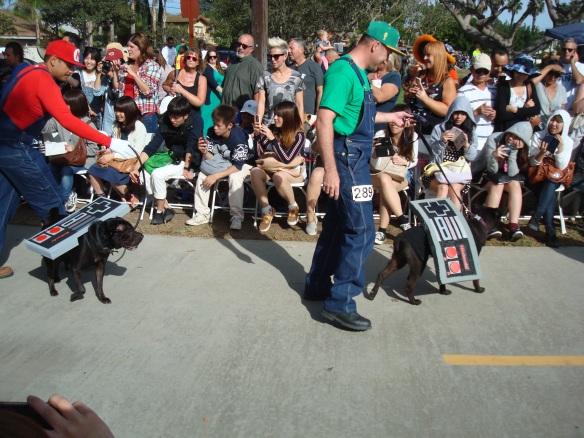 Howlloween Pet Parade 2014 079