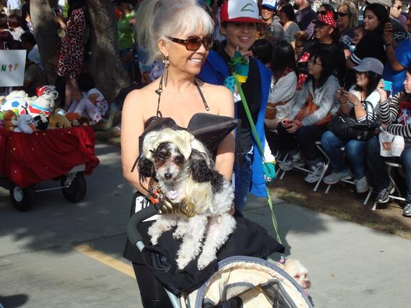 Howlloween Pet Parade 2014 080
