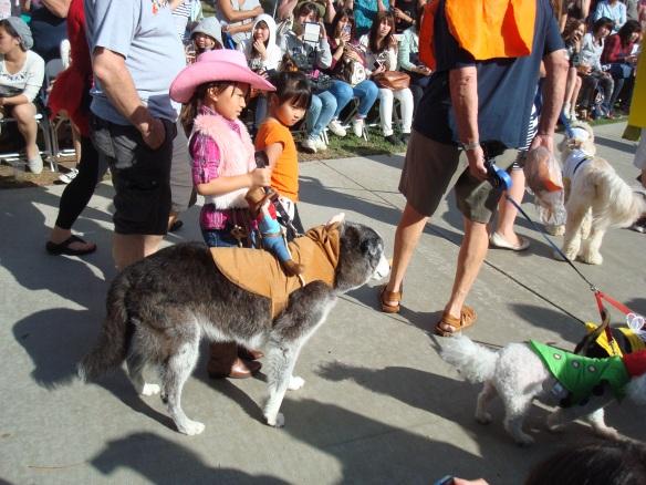 Howlloween Pet Parade 2014 083