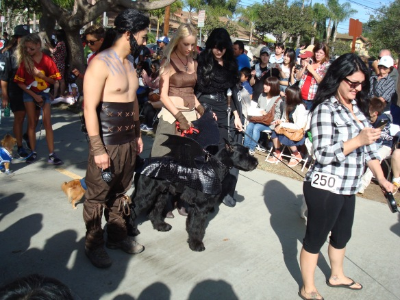 Howlloween Pet Parade 2014 084