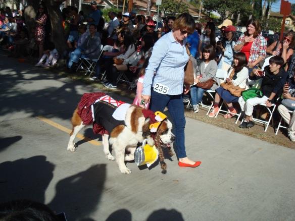 Howlloween Pet Parade 2014 086