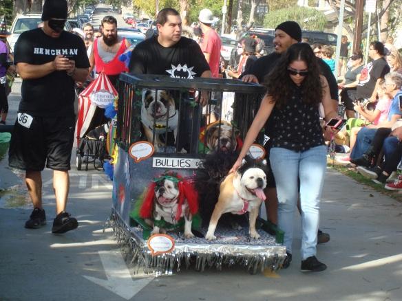 Howlloween Pet Parade 2014 089
