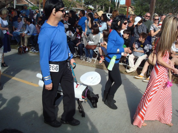 Howlloween Pet Parade 2014 094