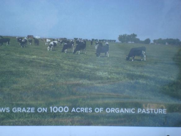 Farm Lot 59 009