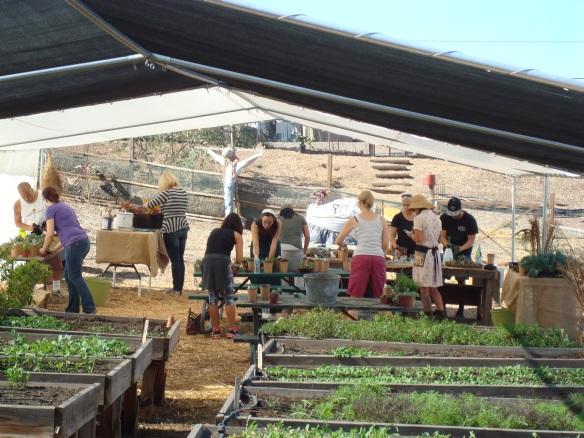 Farm Lot 59 012